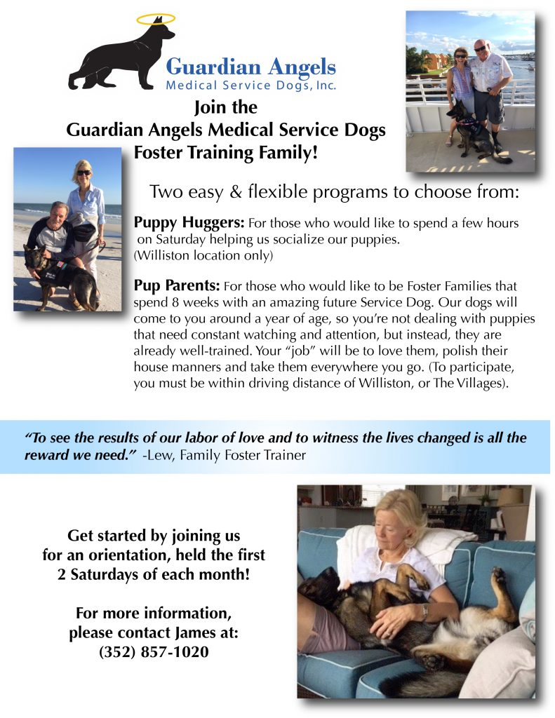 Medical Service Dog Training Flyer