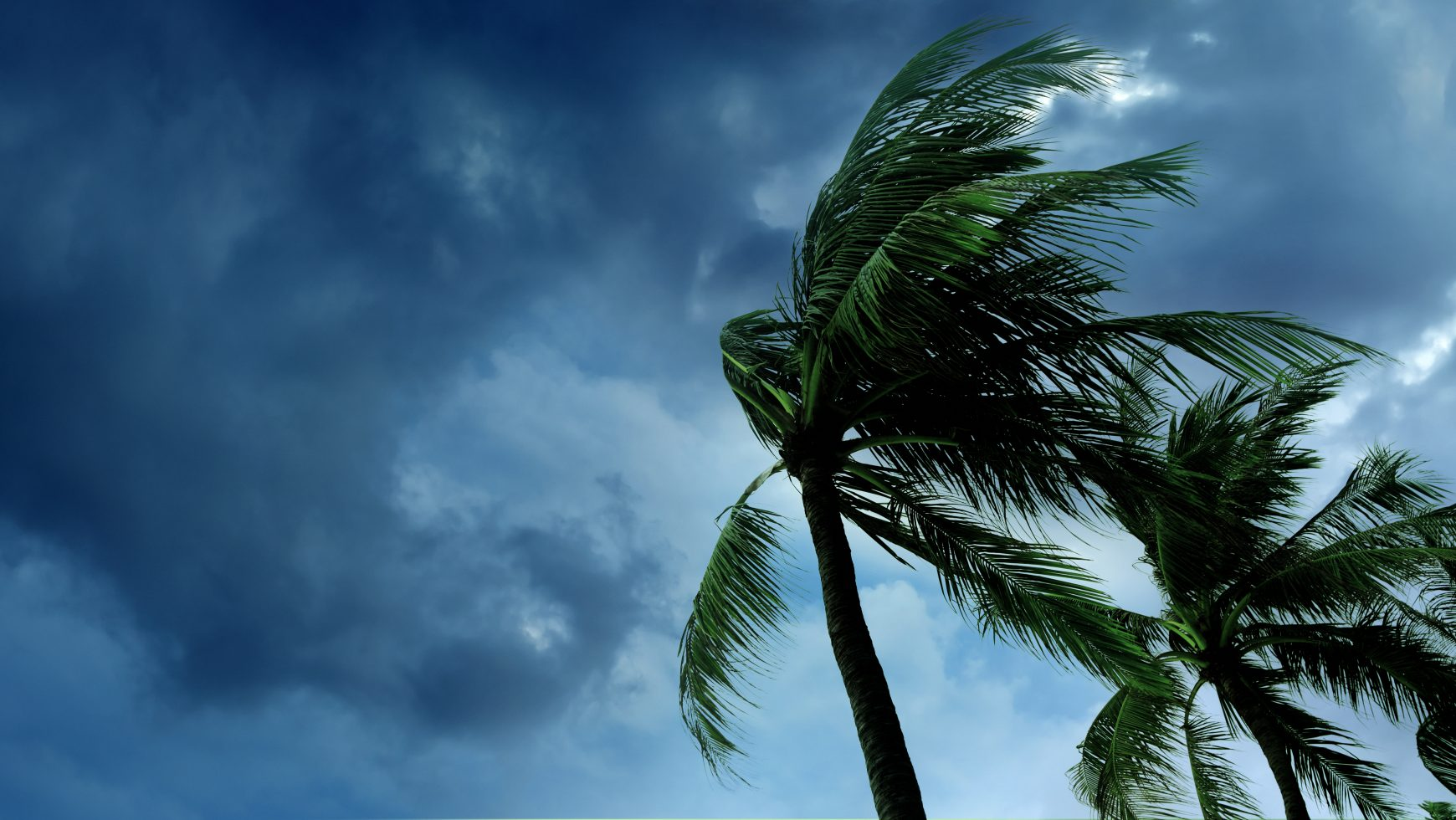2020 Florida Hurricane Preparedness